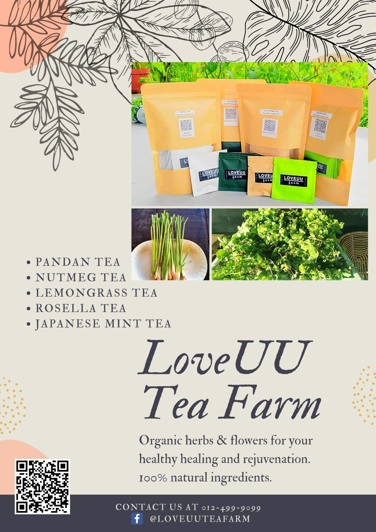 LoveUU Tea Farm